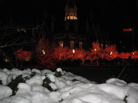 [Photo: Christmas Lights at Temple Square]