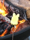The Great Peep Roast of 2012